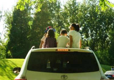 暑期和家人一起亲近自然,畅游野生动物园,采摘庞各庄脆甜大西瓜